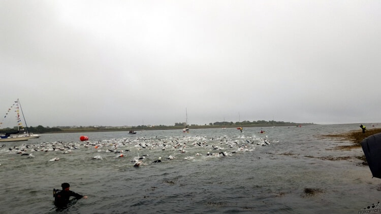 swim_start_web
